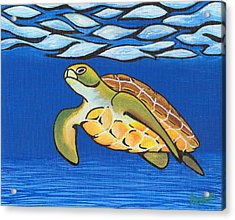 Sea Turtle Acrylic Print by Adam Johnson