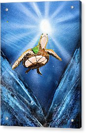 Sea Turtle Acrylic Print by Just Joszie