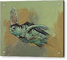 Sea Turtle Acrylic Print by Michael Creese