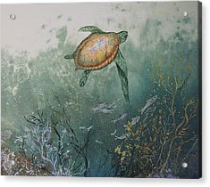 Sea Turtle Acrylic Print by Nancy Gorr