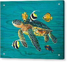 Sea Turtle With Fish Acrylic Print by Emily Brantley
