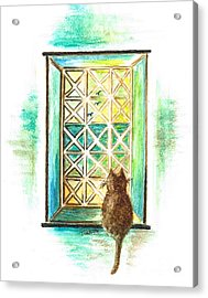 Curiosity - Cat Acrylic Print by Teresa White
