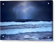 Sea Worlds Acrylic Print