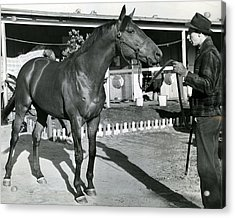Seabiscuit Horse Racing #1 Acrylic Print by Retro Images Archive
