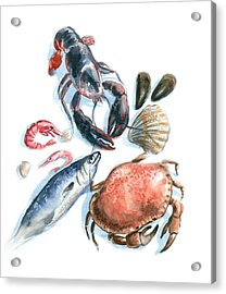 Seafood Watercolor Acrylic Print by Axllll