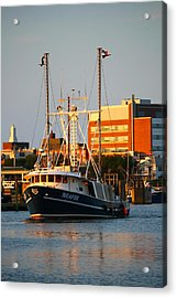 Seafox At Sunset Acrylic Print by Veronica Vandenburg