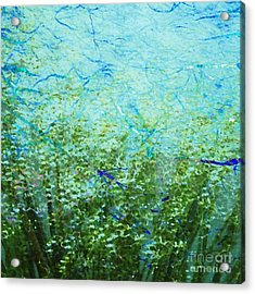 Seagrass Acrylic Print by Darla Wood