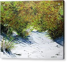 Seagrass Acrylic Print by Ken Ahlering