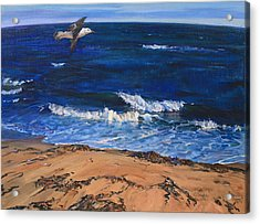 Seagull Flying Along The Surf Acrylic Print