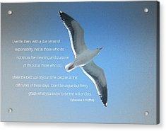 Seagull Soaring W/ Scripture Acrylic Print