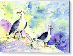 Seagulls In Calpe In Spain Acrylic Print by Miki De Goodaboom
