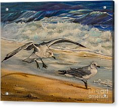 Seagulls On The Beach Acrylic Print by Zina Stromberg