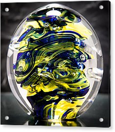 Seahawks Glass -  Solid Glass Sculpture  Acrylic Print by David Patterson