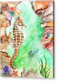 Seahorse Cave Acrylic Print