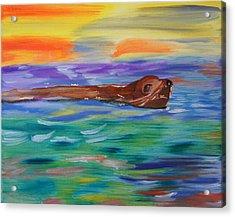 Sunny Sea Lion Acrylic Print by Meryl Goudey