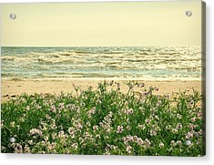 Seascape Acrylic Print by Gynt