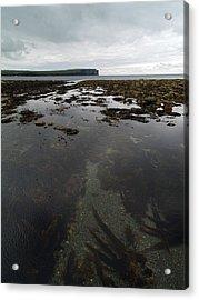 Seascape Acrylic Print by Steve Watson