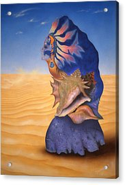 Seashell Girl Acrylic Print by Dan Townsend