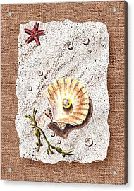 Seashell With The Pearl Sea Star And Seaweed  Acrylic Print by Irina Sztukowski