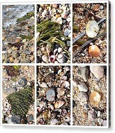 Seashore Collage Acrylic Print by Carol Groenen