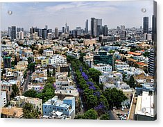 Acrylic Print featuring the photograph season change at Rothschild boulevard  by Ron Shoshani