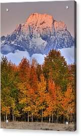 Seasons Change Acrylic Print by Aaron Whittemore