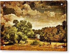 Seasons Change Acrylic Print by Lois Bryan