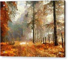 Seasons Come Seasons Go Acrylic Print