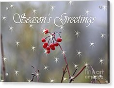 Seasons Greetings Red Berries Acrylic Print