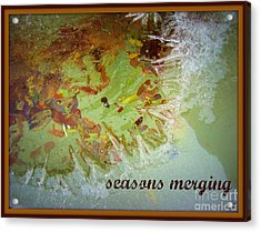 Acrylic Print featuring the photograph Seasons Merging by Heidi Manly