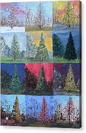 Seasons Of A Dawn Redwood - Sold Acrylic Print