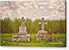 Seasons Of Life Acrylic Print by Scott Pellegrin