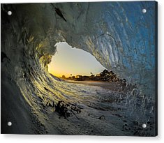 Seaweed Barrel Acrylic Print