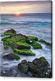 Seaweed, Granite And Blue Water Acrylic Print by Peter G Knott