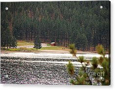 Secluded Cabin Acrylic Print by Mary Carol Story