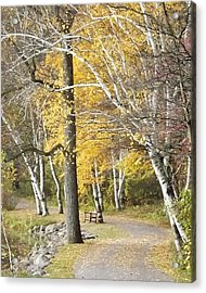 Acrylic Print featuring the photograph Secluded Lake Road by Bill Woodstock