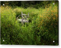 Seclusion Acrylic Print by Bill Wakeley