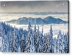 Second Level Acrylic Print by Evgeni Dinev