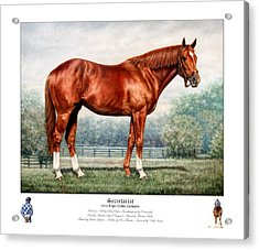 Secretariat Triple Crown Champion Acrylic Print by Thomas Allen Pauly