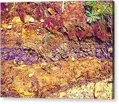 Sedimental Value Acrylic Print