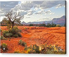 Sedona Arizona Dead Tree - 04 Acrylic Print by Gregory Dyer