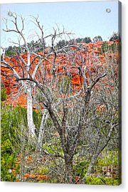 Sedona Arizona Dead Tree Acrylic Print by Gregory Dyer