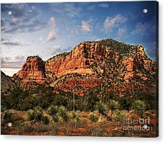 Acrylic Print featuring the photograph Sedona Vortex  And Yucca by Barbara Chichester