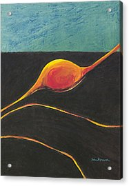 Seed Nucleus Acrylic Print