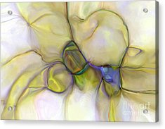 Seed Pods Acrylic Print