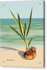 Seedling Floating Ashore Acrylic Print