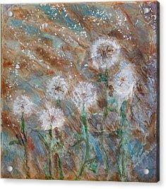 Seeds Of Spring Acrylic Print