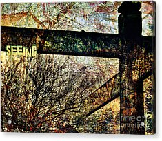 Seeing Acrylic Print by Currie Silver