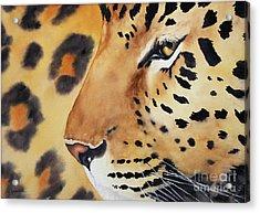 Seeing Spots Acrylic Print
