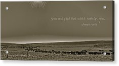 Seek And Find Acrylic Print
